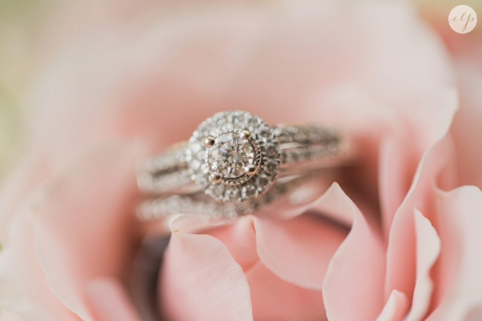 A-Grey-And-Pink-Classic-Romantic-Ohio-MidWest-Wedding_3307