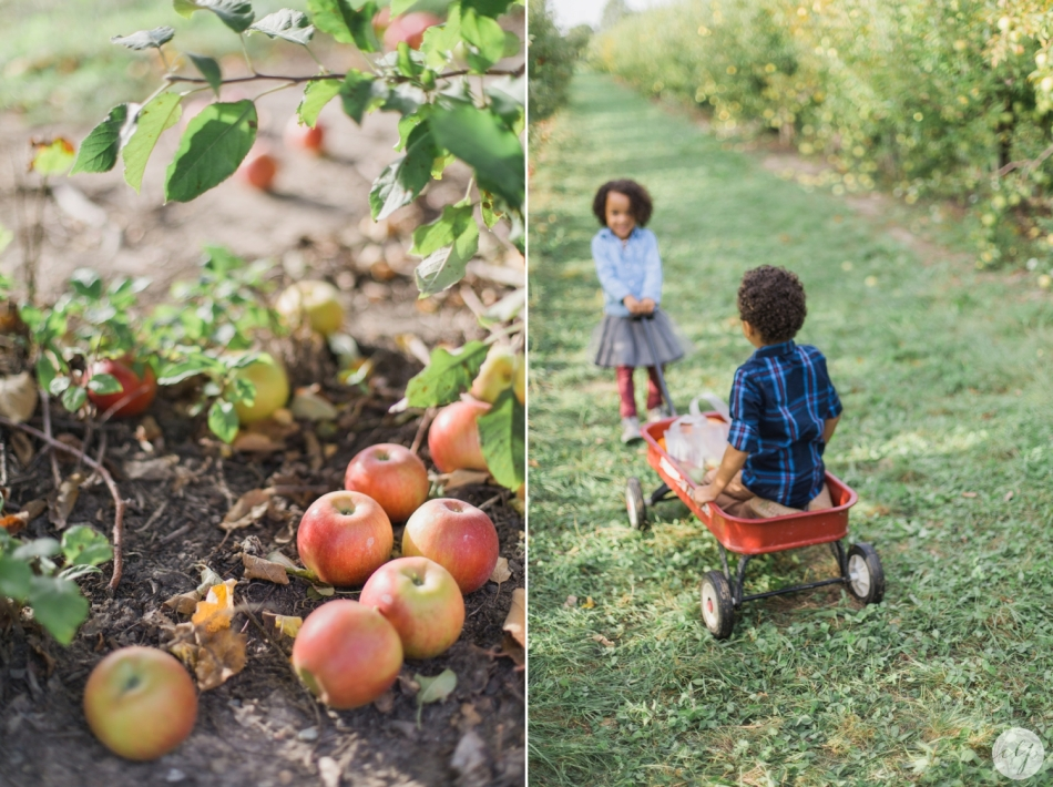 Tuttle-Orchard-Indiana-Family-Photography_3613