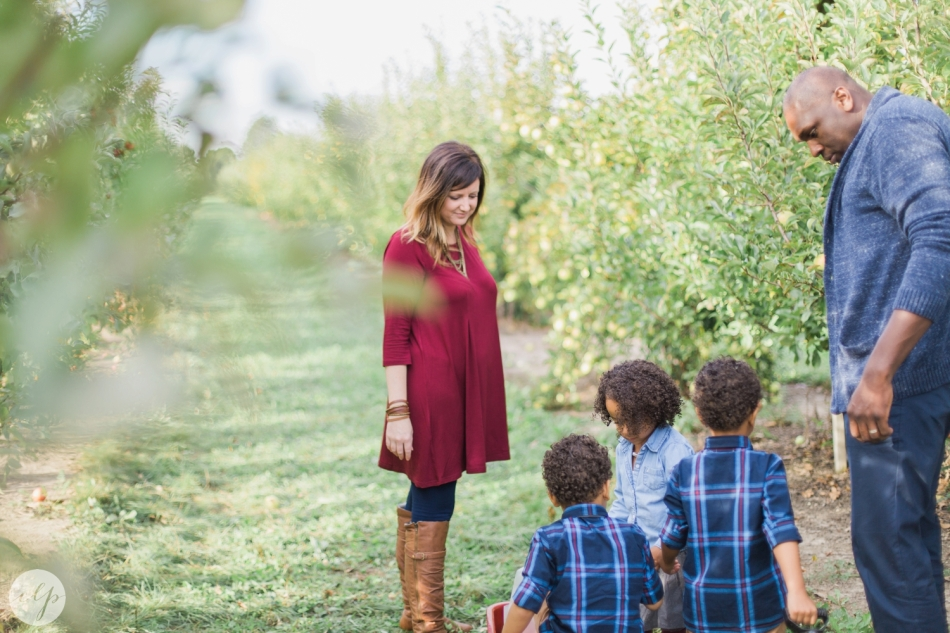 Tuttle-Orchard-Indiana-Family-Photography_3614