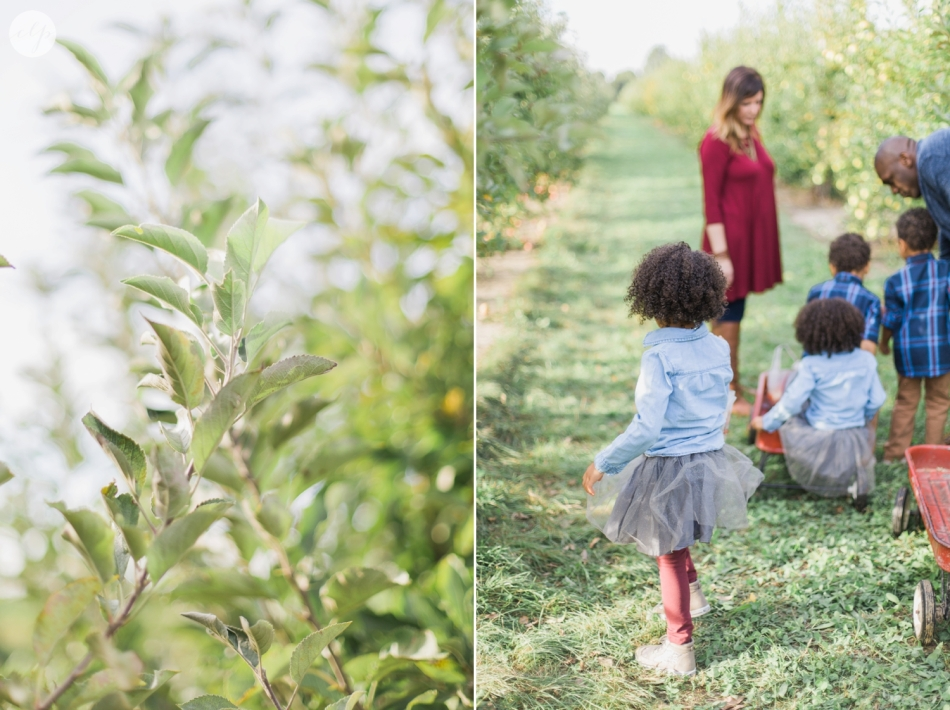 Tuttle-Orchard-Indiana-Family-Photography_3616