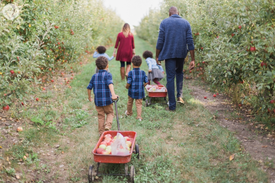 Tuttle-Orchard-Indiana-Family-Photography_3646